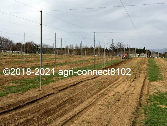 f:id:agri-connect:20210404232218j:plain