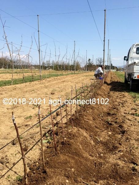 f:id:agri-connect:20210408222050j:plain