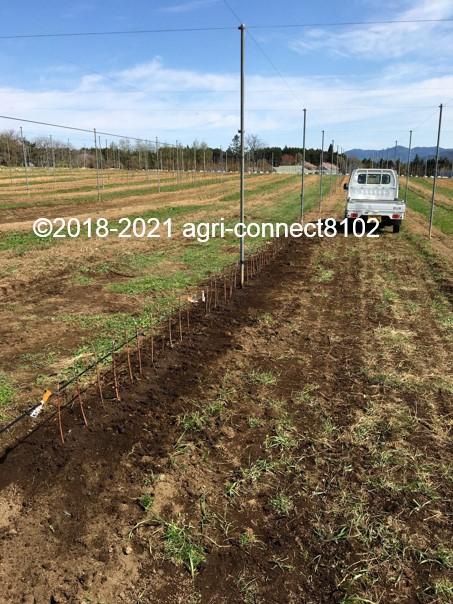 f:id:agri-connect:20210408222054j:plain