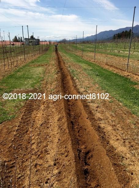 f:id:agri-connect:20210408222258j:plain