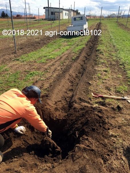 f:id:agri-connect:20210408222538j:plain