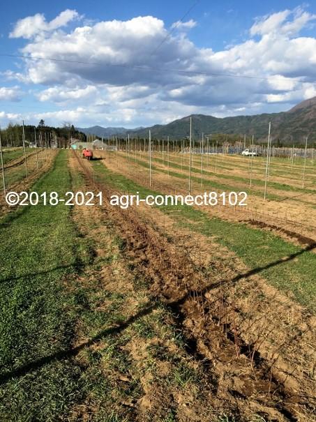 f:id:agri-connect:20210408222818j:plain