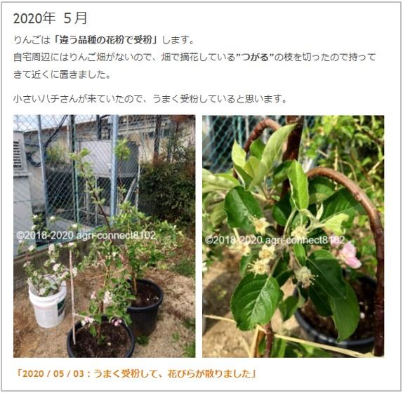 f:id:agri-connect:20210411214756j:plain