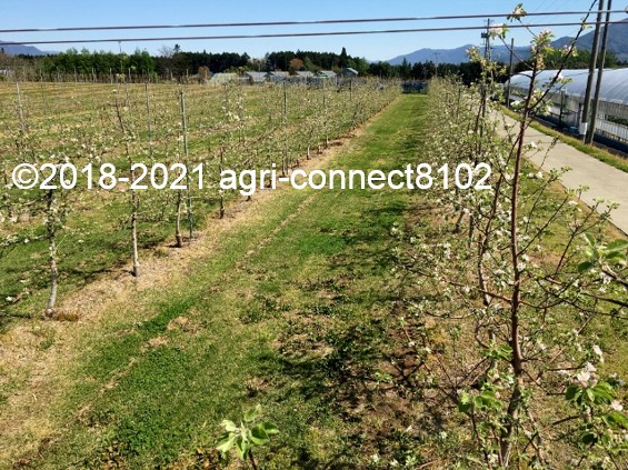 f:id:agri-connect:20210422225951j:plain