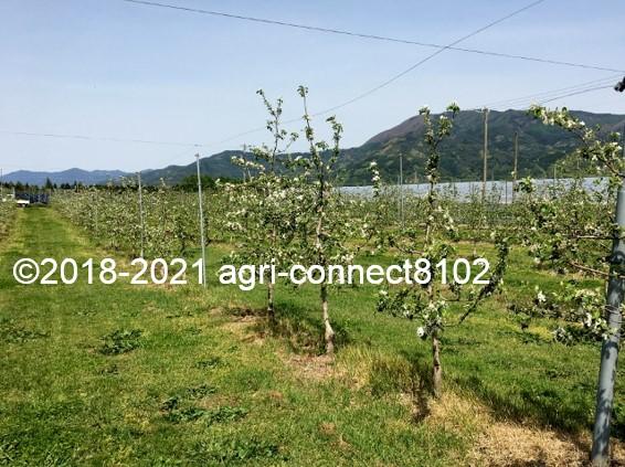 f:id:agri-connect:20210508221031j:plain