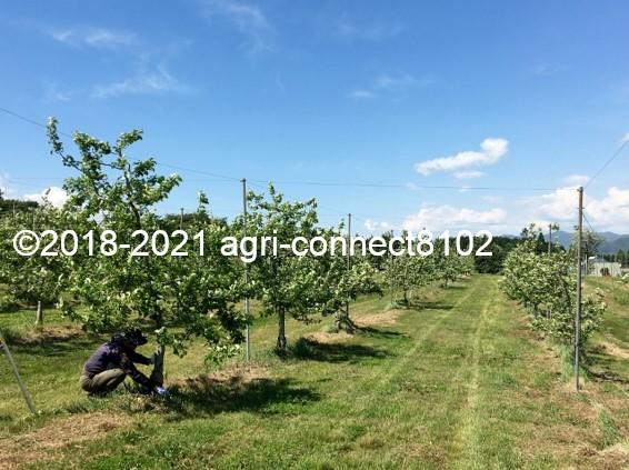 f:id:agri-connect:20210515214541j:plain