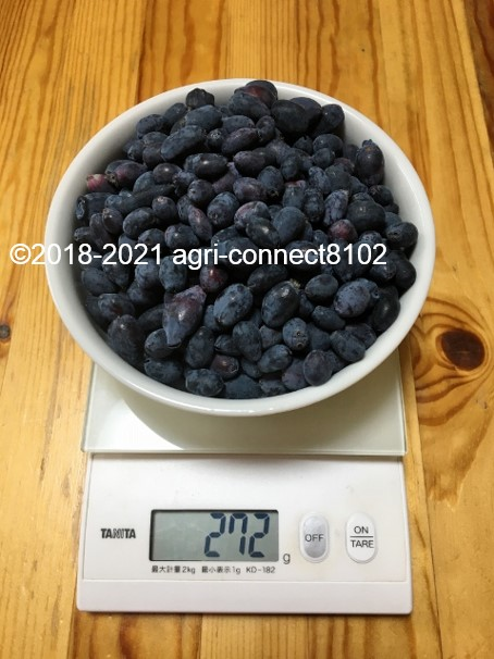 f:id:agri-connect:20210521170923j:plain