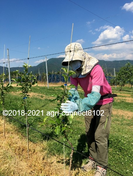 f:id:agri-connect:20210616222153j:plain