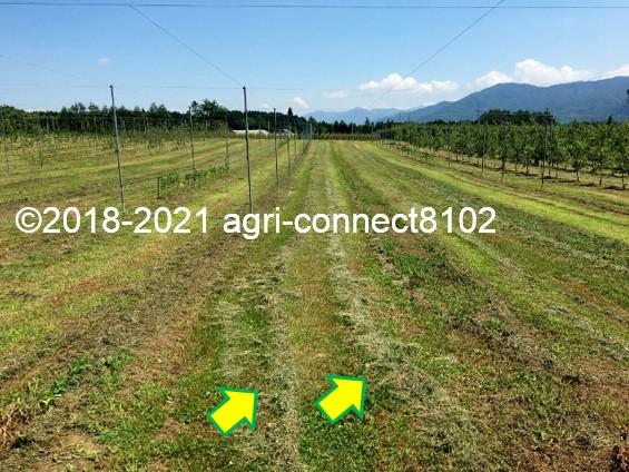 f:id:agri-connect:20210722165436j:plain