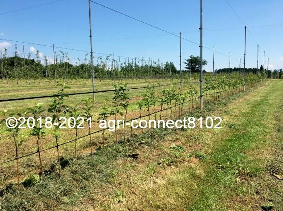 f:id:agri-connect:20210722165728j:plain