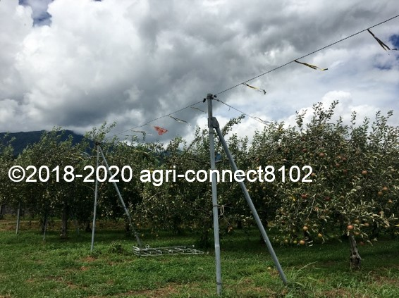 f:id:agri-connect:20210729233014j:plain