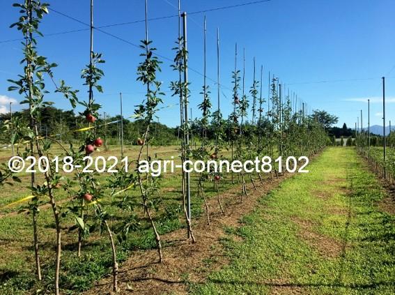 f:id:agri-connect:20210808160848j:plain