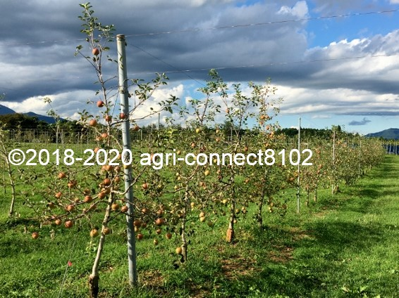 f:id:agri-connect:20210906214006j:plain