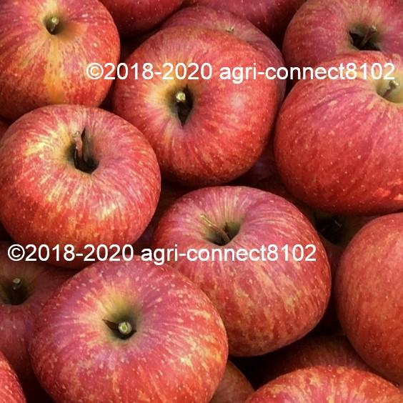 f:id:agri-connect:20211011234452j:plain