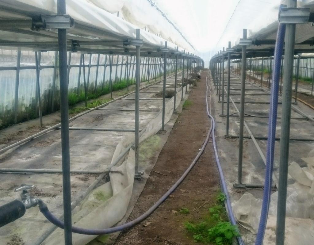 f:id:agri-work:20181215121430j:plain