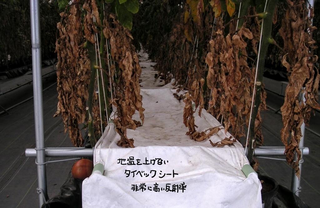 f:id:agri-work:20181219210250j:plain