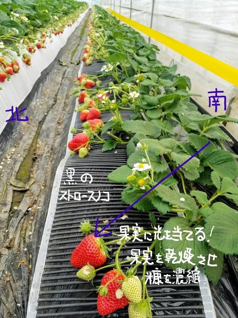f:id:agri-work:20190110204326j:plain