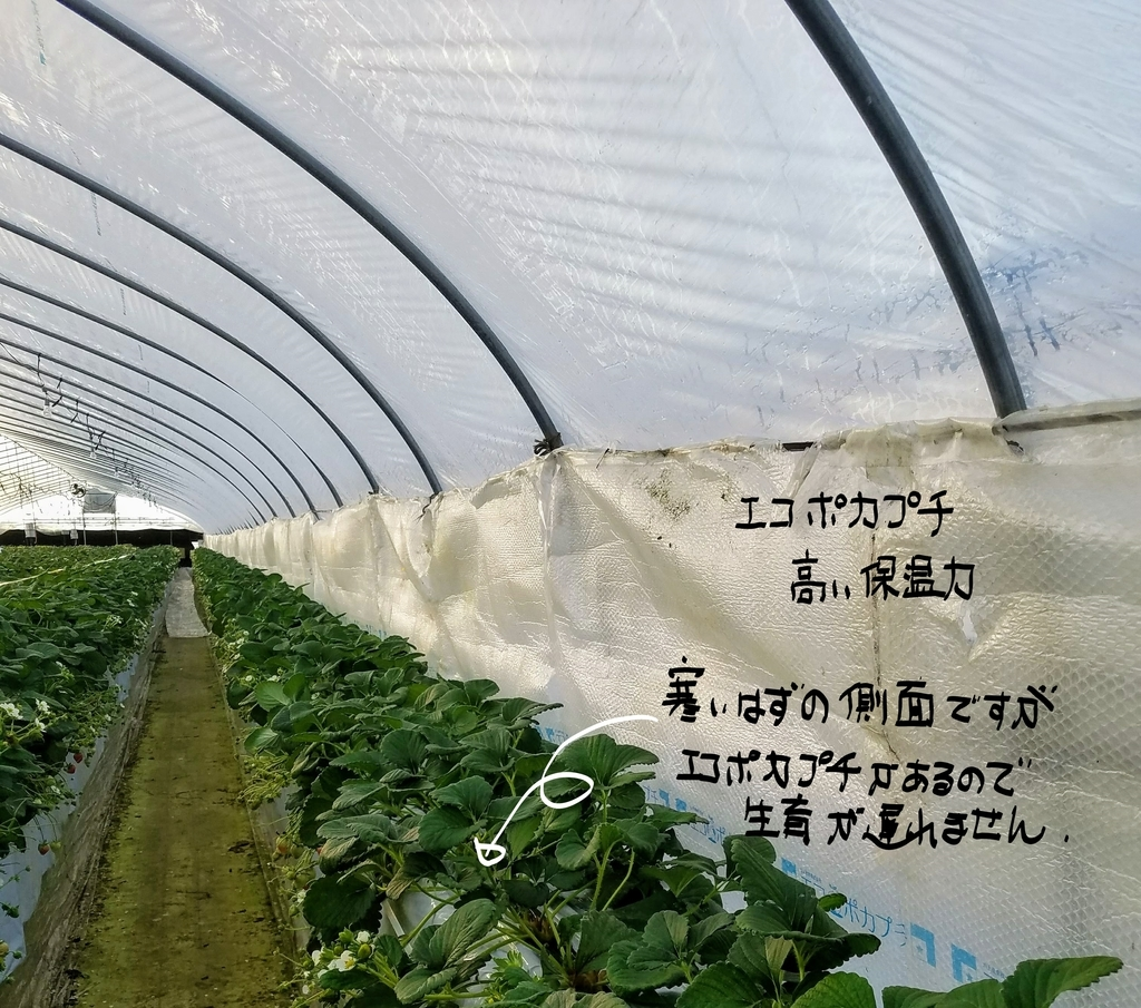 f:id:agri-work:20190111204315j:plain