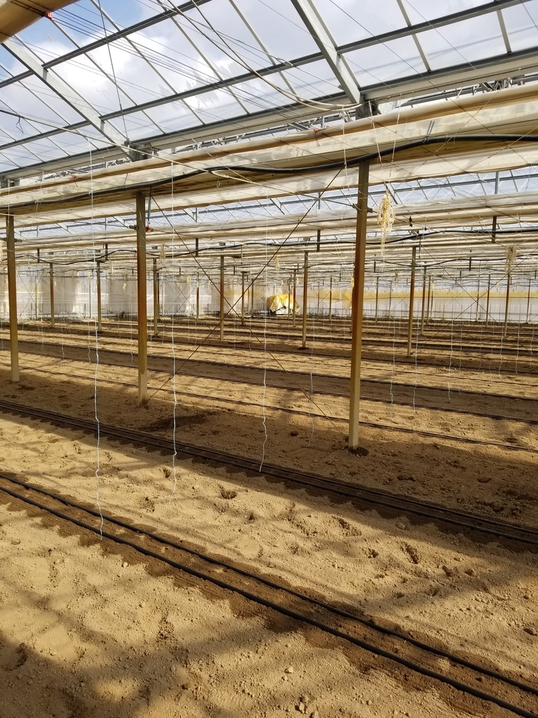 f:id:agri-work:20190223101122j:plain