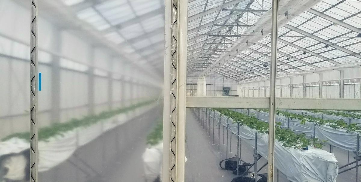 f:id:agri-work:20190617200325j:plain
