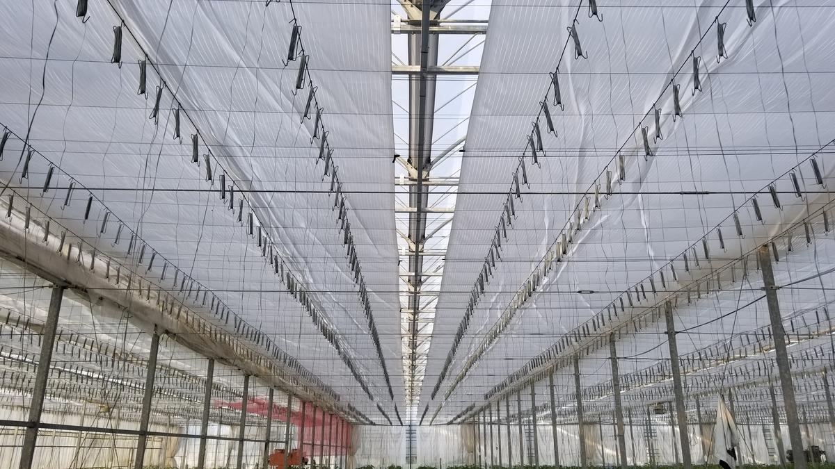 f:id:agri-work:20190907200210j:plain