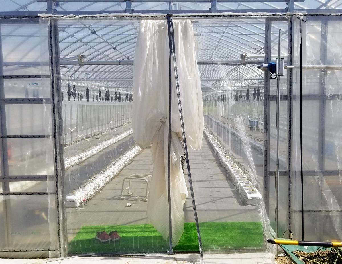 f:id:agri-work:20200609222741j:plain