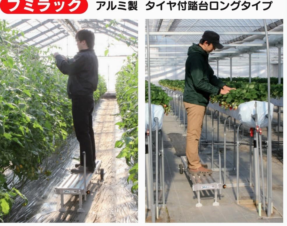 f:id:agri-work:20200824222053j:plain