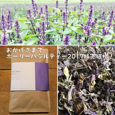 f:id:aguri-therapyfarm-rainbow6868:20170828002807j:plain