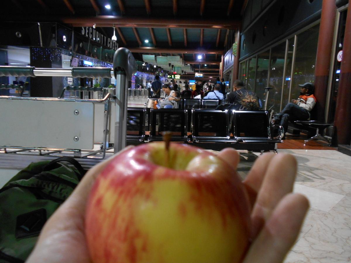 スカルノハッタ国際空港 リンゴ