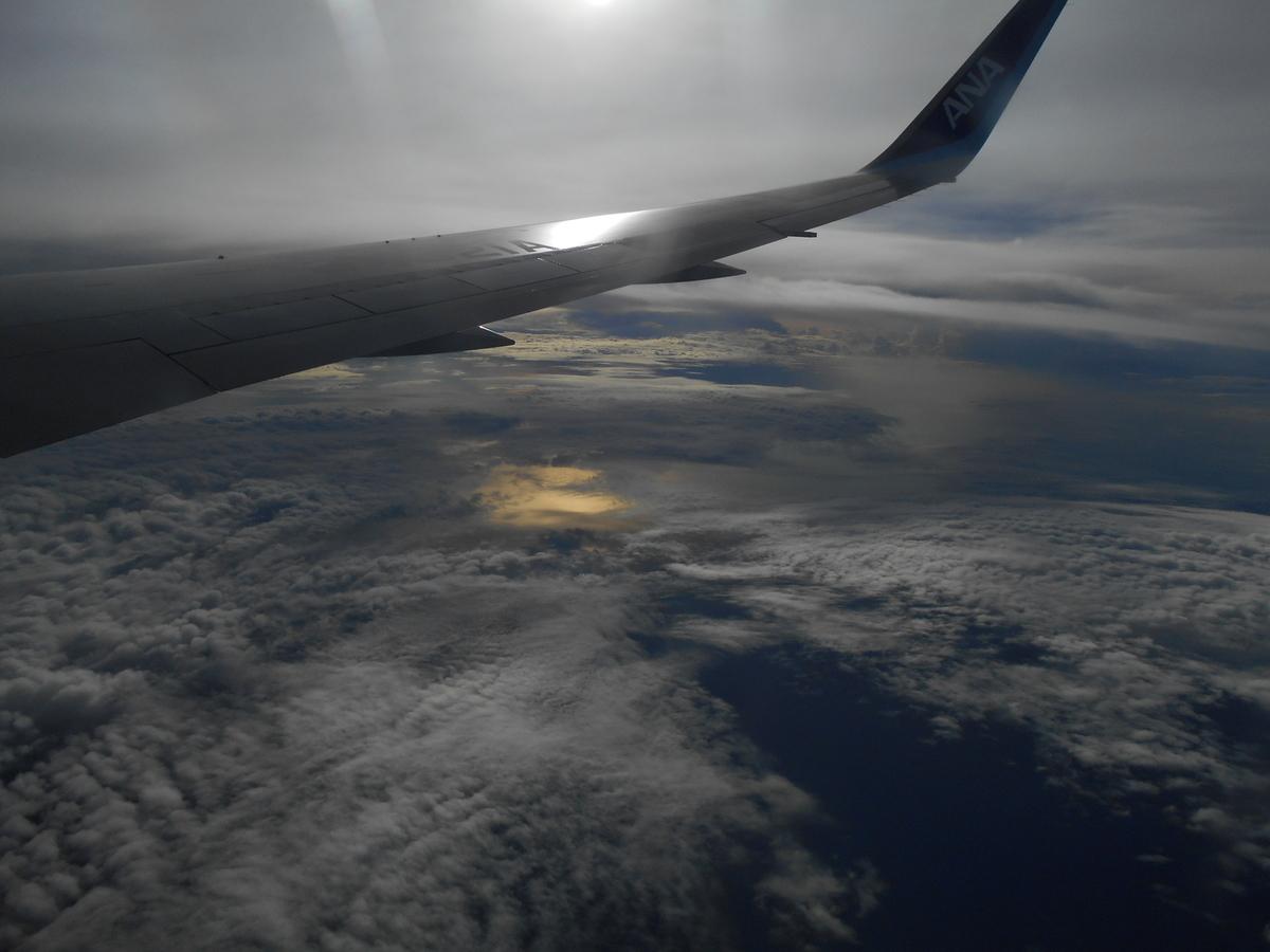 ANA ジャカルタ上空