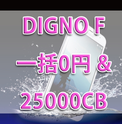 f:id:ahiru8usagi:20170619201752j:plain