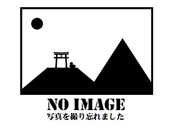 f:id:ahirukuwakuwa:20200817161635p:plain