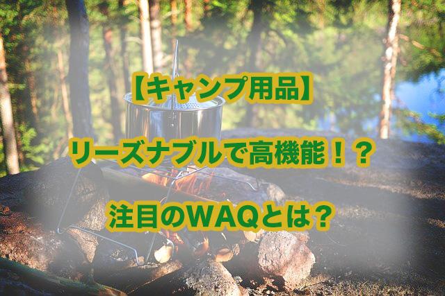 f:id:ai-ru-papan:20200524214631j:plain