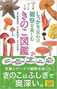 f:id:ai-syobou:20171022170521p:plain