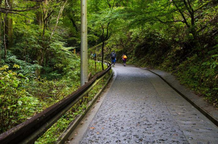 高尾山の表参道一号路