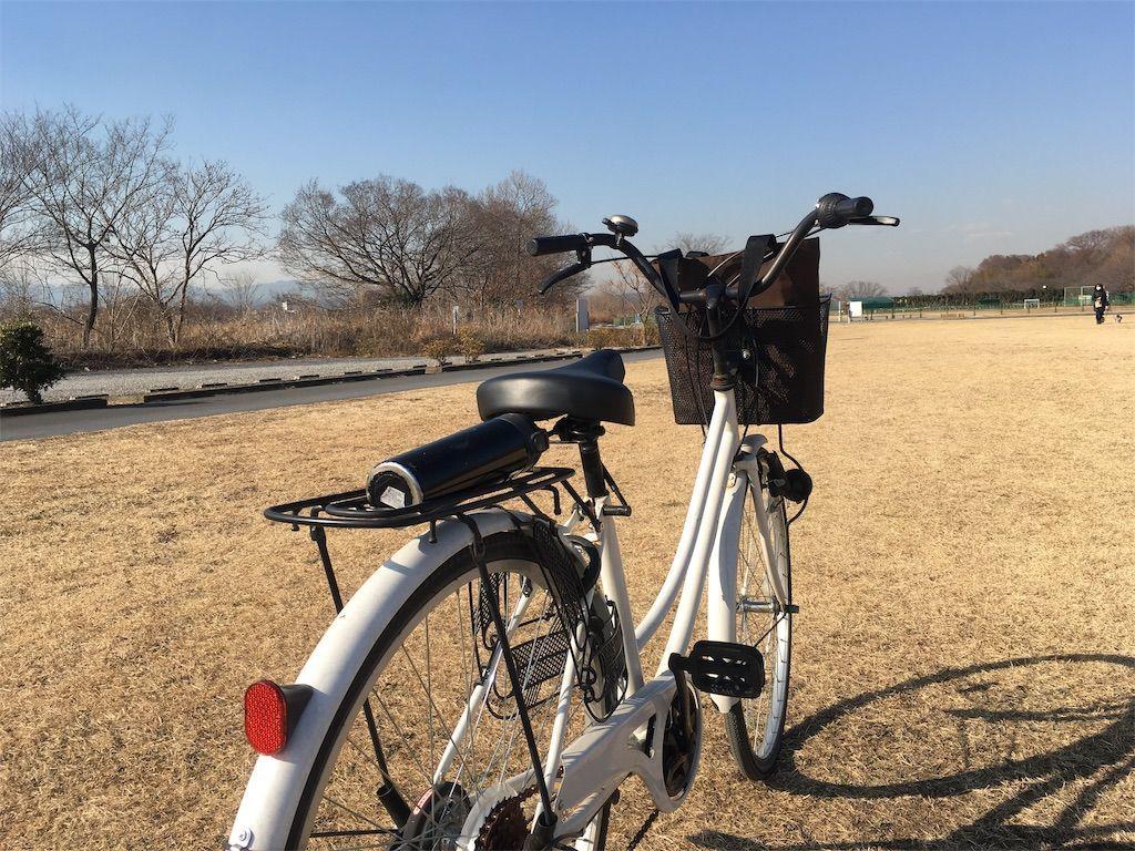 ママチャリで多摩川サイクリングロード「たまリバー50キロ」