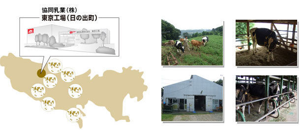 東京酪農牧場