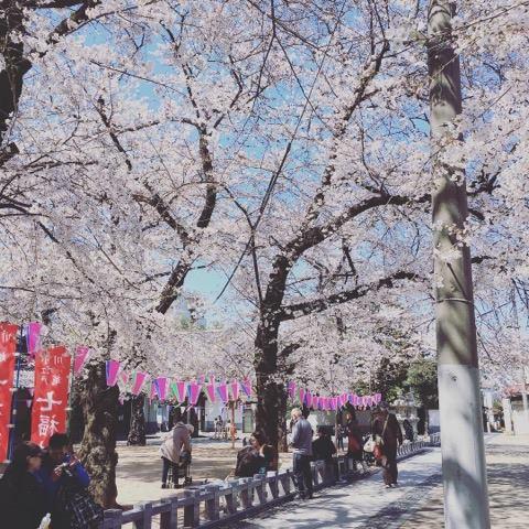 f:id:aiba-kurashigoto:20190412190207j:plain