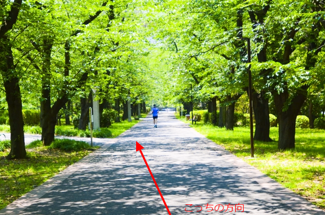 f:id:aiba-yamaguchi:20170610082020p:plain