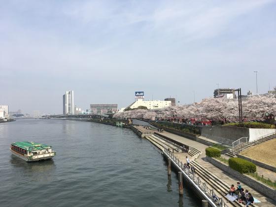 隅田公園・向島エリア
