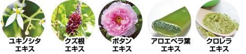 f:id:aichan-y29:20170809191144p:plain