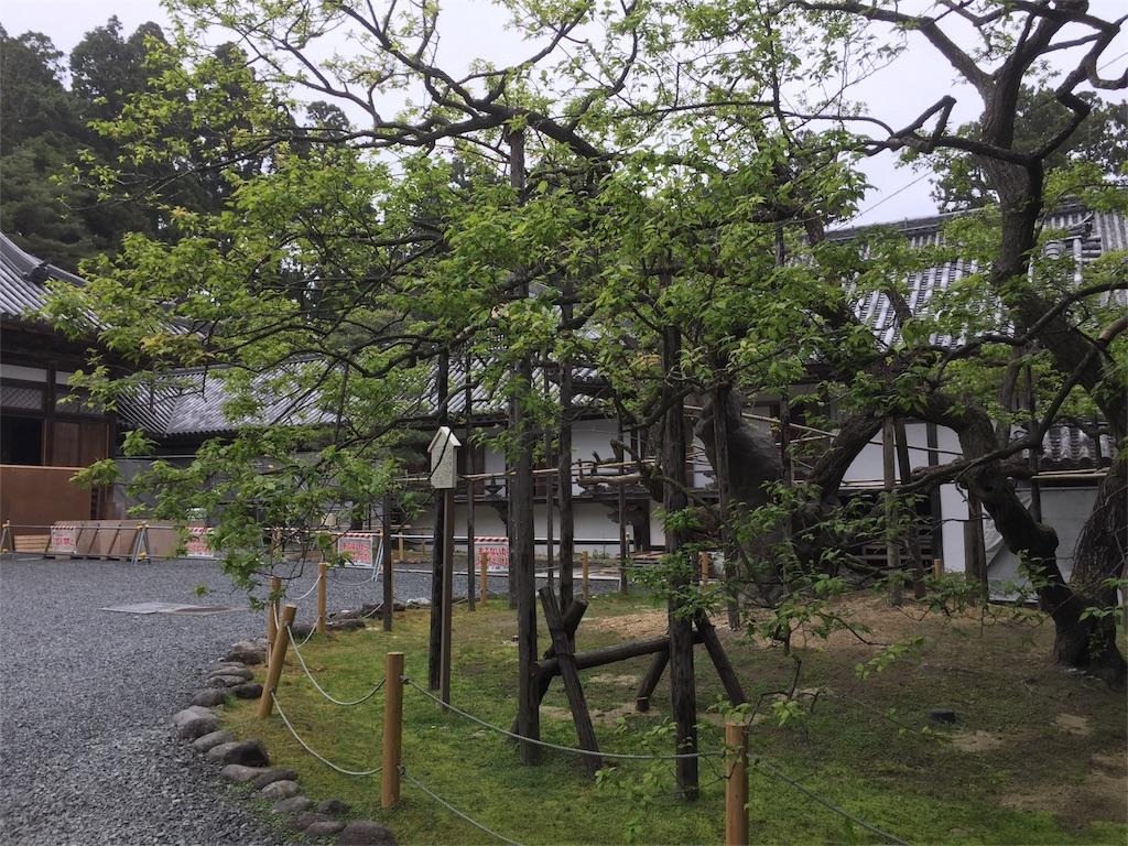 f:id:aichi-auto-body:20170510182838j:image