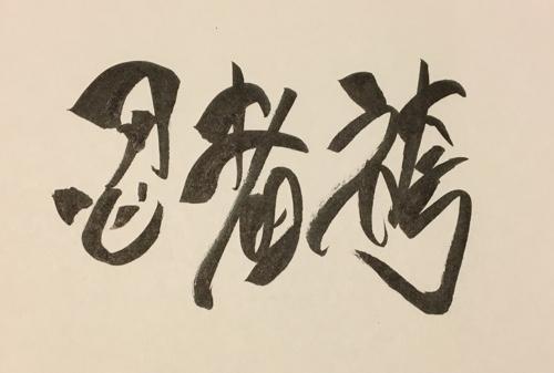 f:id:aichi-ninja:20170203212121j:plain