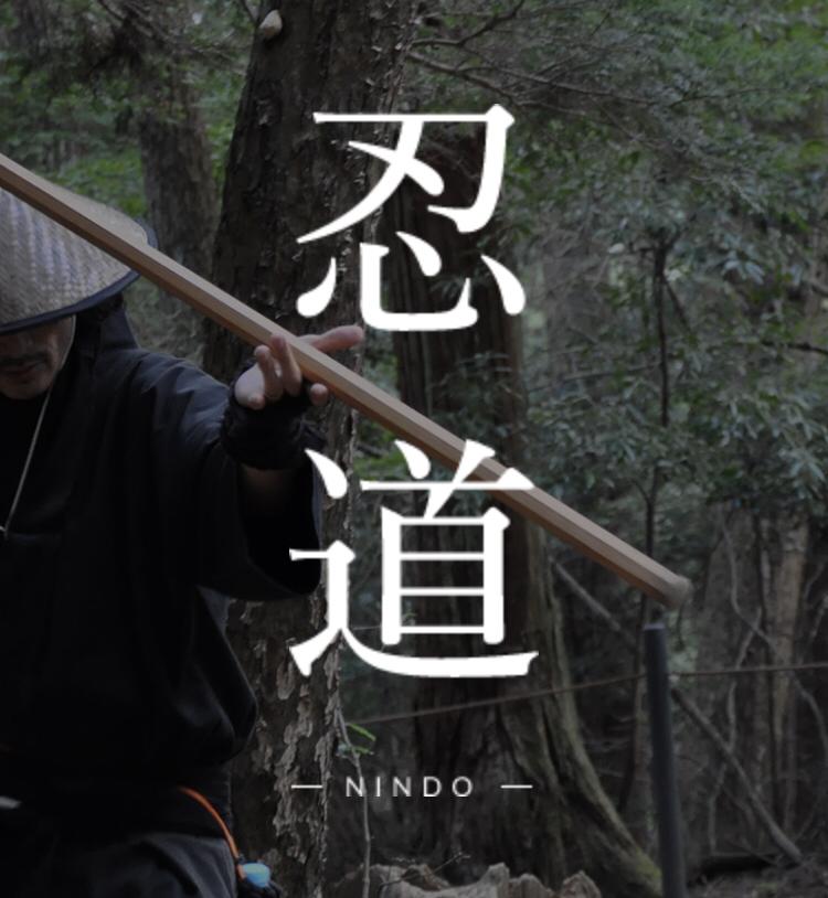 f:id:aichi-ninja:20190618153942p:plain