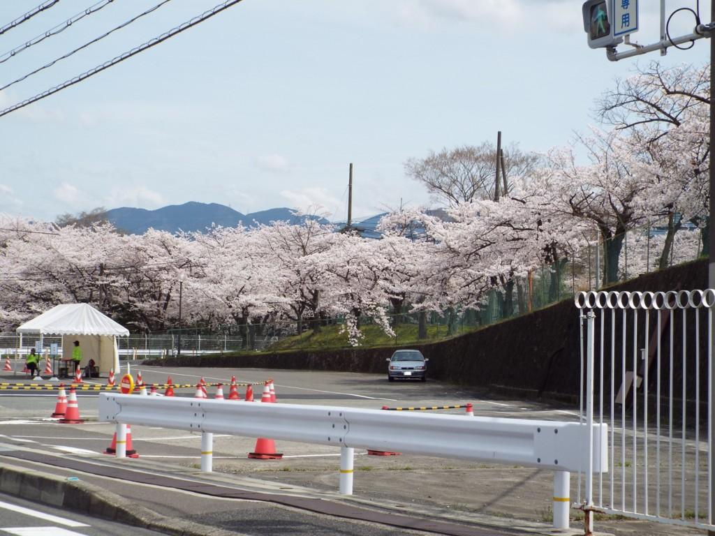 f:id:aigawa2007:20140403125913j:plain