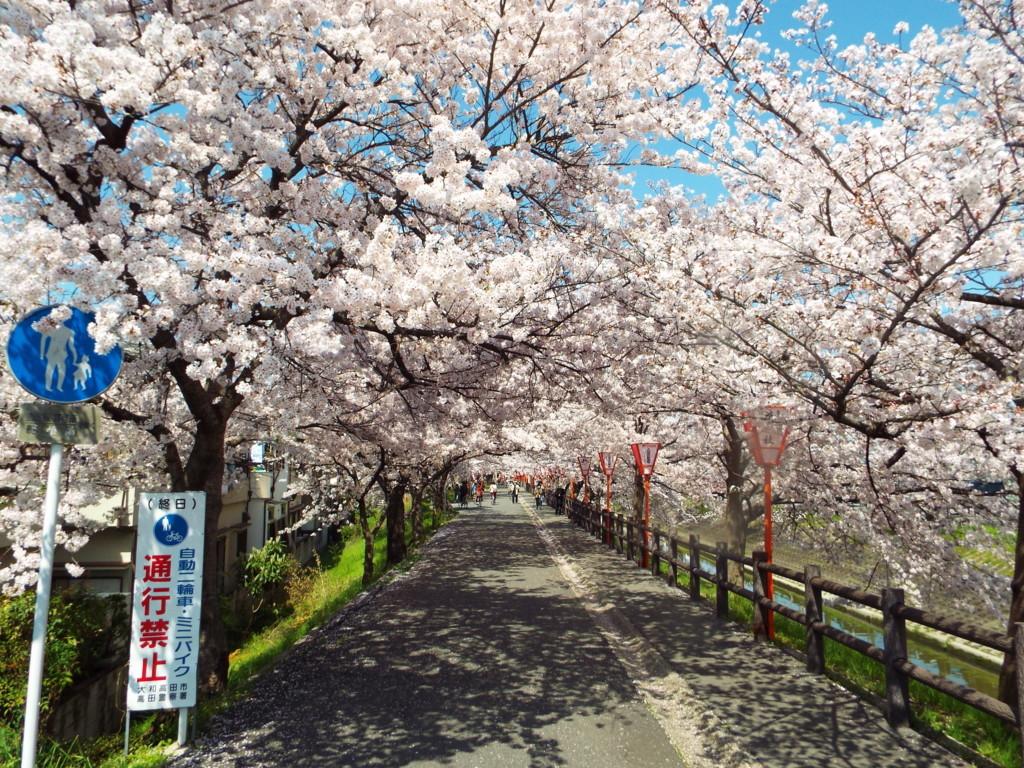 f:id:aigawa2007:20150402130122j:plain