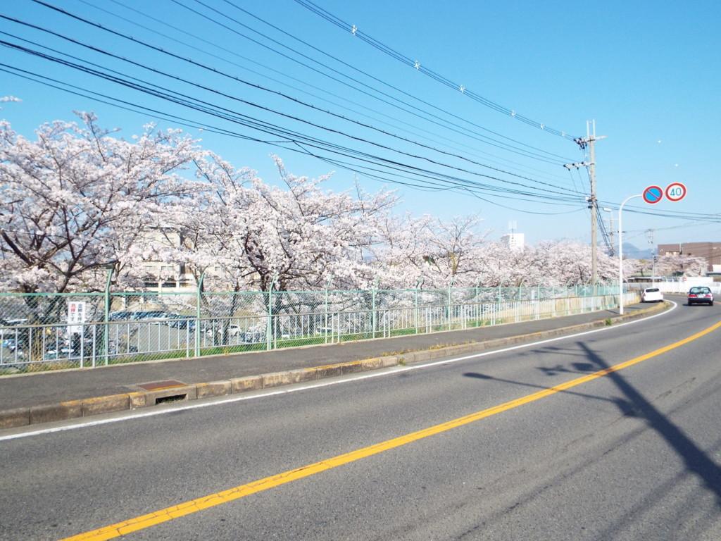 f:id:aigawa2007:20180328152558j:plain