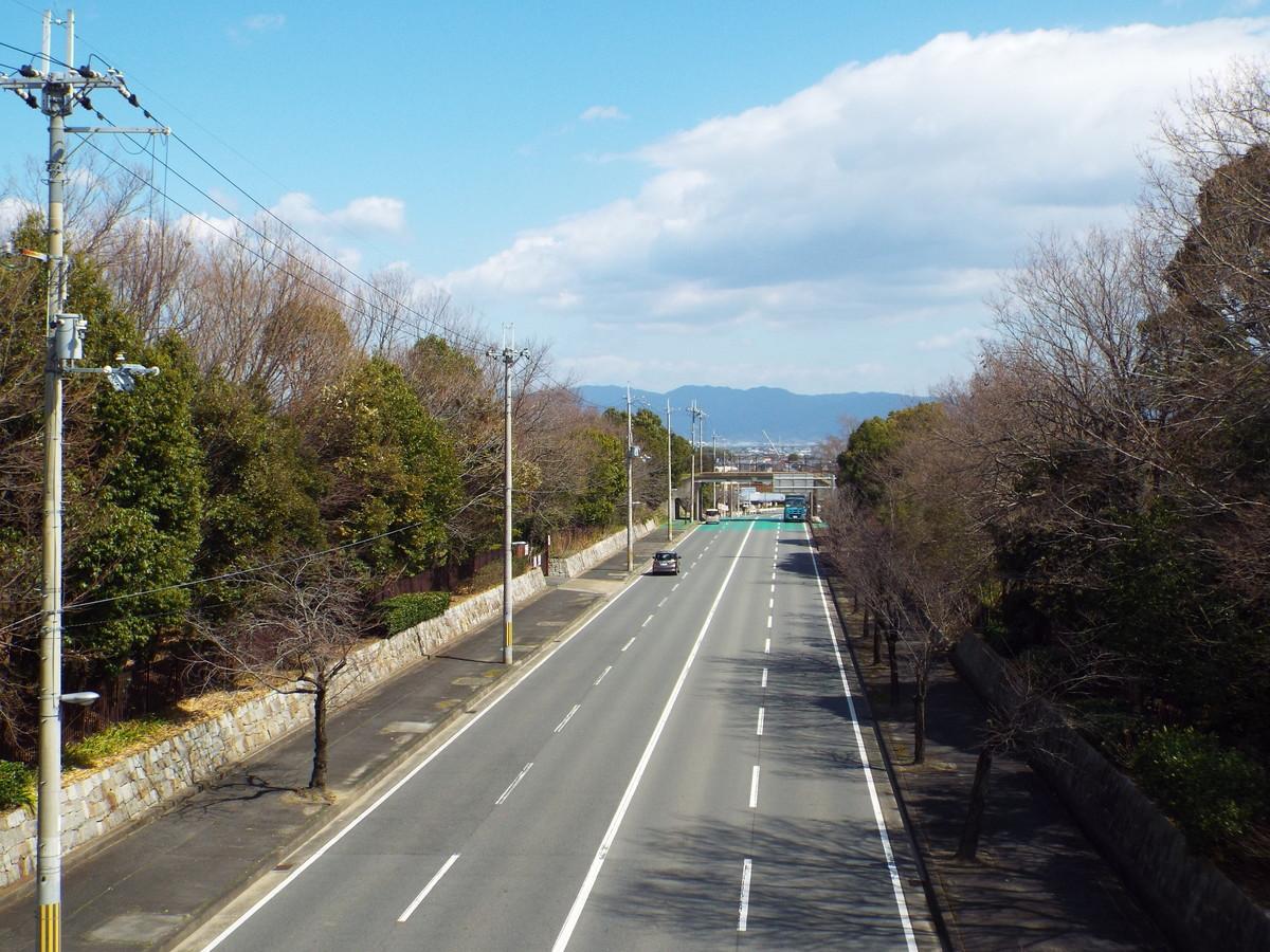 f:id:aigawa2007:20190313122215j:plain
