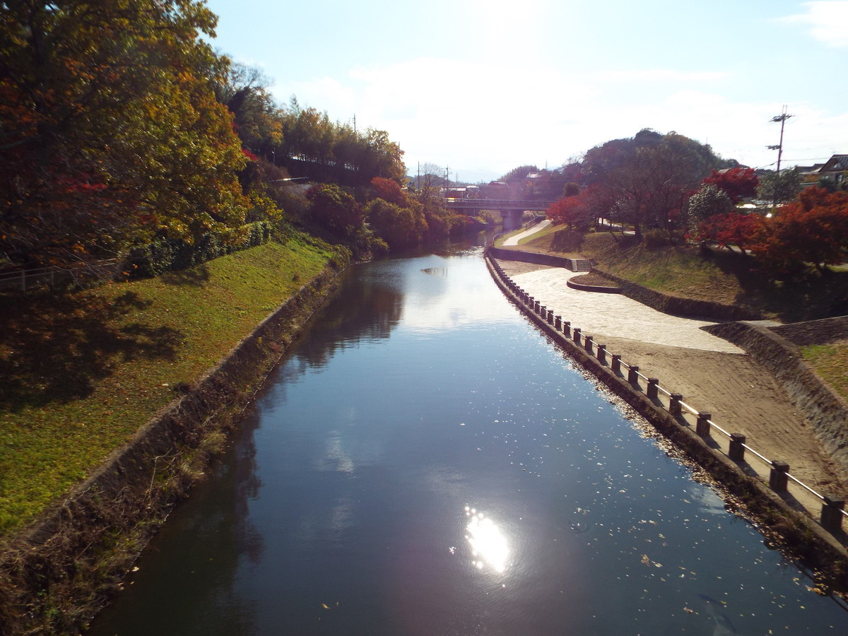 f:id:aigawa2007:20191205130010j:plain