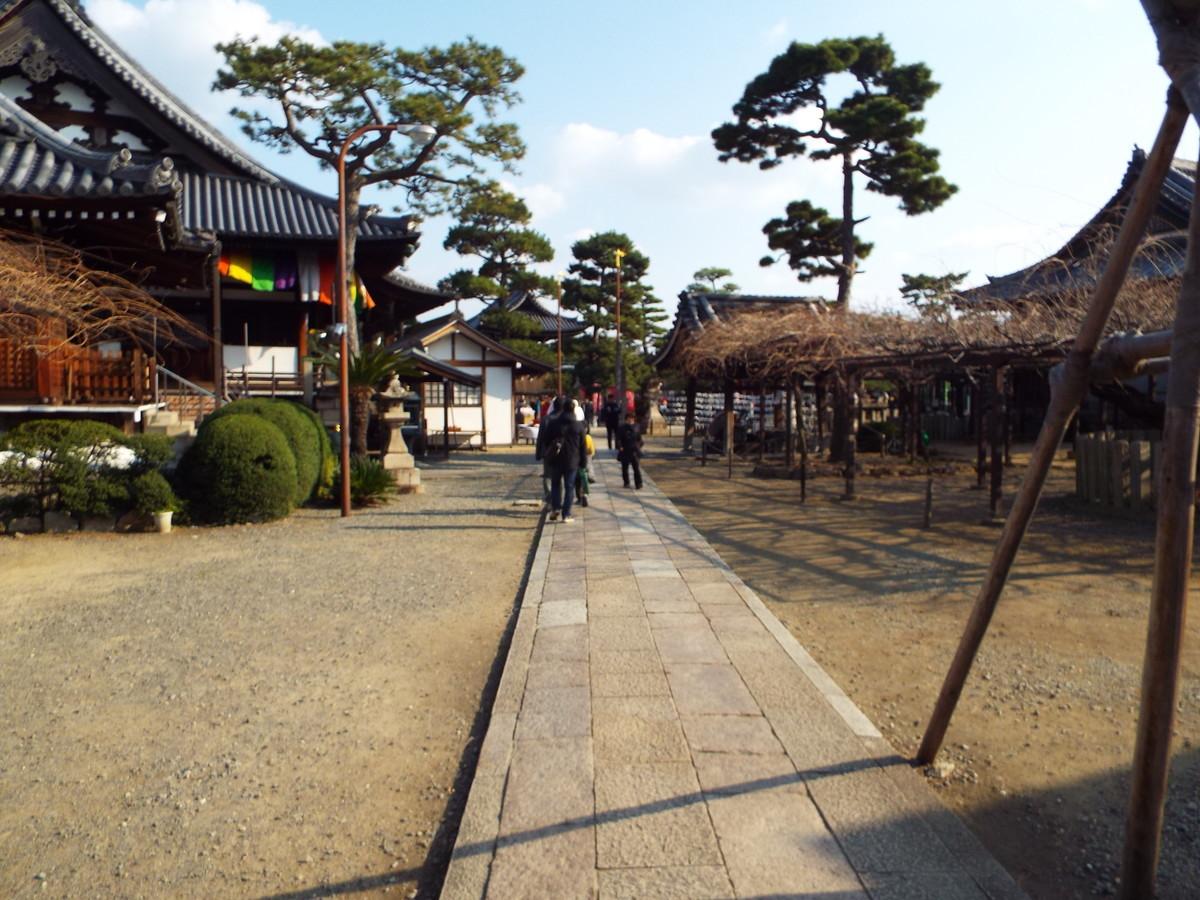 f:id:aigawa2007:20200103132712j:plain